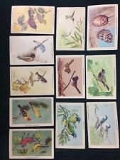11 Rugby Laboratories Inc Collectible Birds Trading Cards 1986