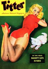 Vintage Titter magazine cover pinup pin-up girl Naughty Cats sexy girl lingerie