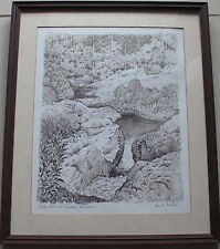 Frank Mather~Australian Artist~original drawing~Wappa Falls, Yandina, Queensland