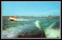REHOBOTH BEACH DELAWARE WILSON'S PIER WATER SKIING POSTCARD