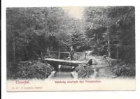 AK Harz Oberharz Clausthal Zellerfeld Waldweg Brücke Prinzenteich  1908 Wanderer