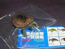 New Takara Tomy Yujin Reptile Sea Turtle Graptemys nirinoda Figure Toys Boys 8+
