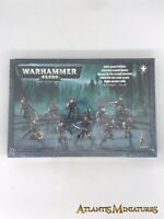 Dark Eldar Wyches Boxed - Warhammer 40K C727