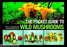 The Pocket Guide To Wild Mushrooms Fungophile Mushroom Foraging Field Guide  New