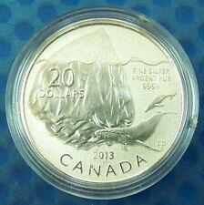 Canada 2013 $20 Iceberg--Pure .9999 Silver Coin