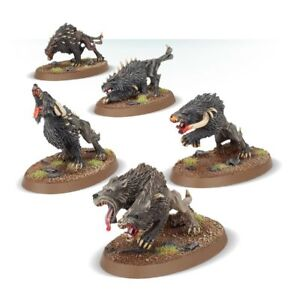 Warhammer Age Of Sigmar Beasts Of Chaos Metal Collection - Warhounds of Chaos