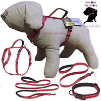 The Company of Animals Dog Halti Lead, Harness, Collar All in one lead All Sizes
