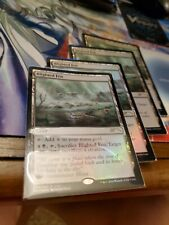 Blighted Fen Fnm Foil X4