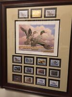 FRAMED DUCK STAMP PRINT FRAMES-CUSTOM MATTED TO FIT YOUR PRINT AND STAMPS