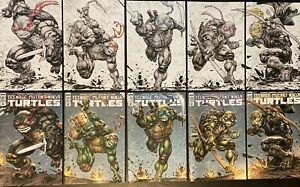 TMNT 108, 109, 110, 111, 112 Evolve Comics Freddie Williams Variants Connecting