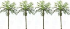 4 ARTIFICIAL 7' PALM TREE PLANT PHOENIX POOL PATIO TROPICAL GARDEN SAGO PORCH