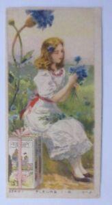 Kaufmannsbilder, Chocolat Tobler, Frauen, Mode, Serie 1    1900 ♥
