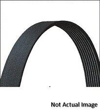 Drive-Rite 17285DR Accessory Drive Belt