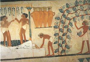 Kunstkarte / Postcard Art - Ägyptische Grabmalerei: Weinkeller / Theben
