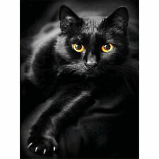Black Cat Full Drill DIY 5D Diamond Painting Wall Decor Embroidery Kits Animal
