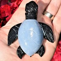 """XL CHARGED 4"""" Angelite Black Onyx Crystal Hand-Carved Turtle Peaceful Protection"""