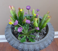 4 Artificial Succulents Plants Blooming Cactus With Purple Flowers Grass