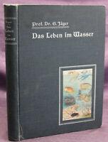 Jaeger Das Leben im Wasser & das Aquarium 1905 Naturwissenschaft Tiere sf