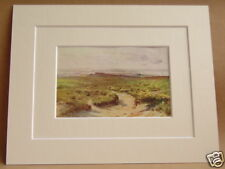STUDLAND HEATH AND POOLE HARBOUR RARE VINTAGE DOUBLE MOUNTED PRINT 10X8 OVERALL