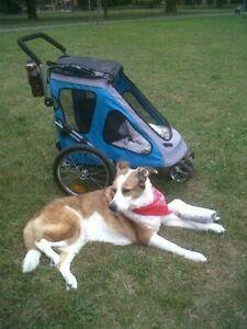 Dog Bike Trailer & Buggy Secure Pet Travel Stroller Warm Cabin Waterproof Cover