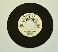 """Jimmy Lewis & Volumes I Saw a Cottage.../In My Heart 45 RPM 7"""" Doo Wop vinyl"""