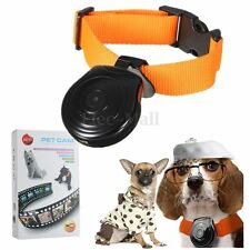 LCD Digital Pet Dogs Cat Collar Camera DVR Video Eyeview Recorder Camcorder +Box