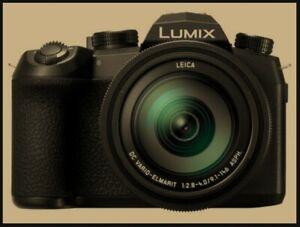 Panasonic Lumix FZ1000 II (Series 2 / Mark II / MII) WITH EXTRAS!