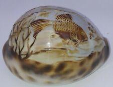 Sea Shell Hand Carved Goldfish Seashell Art