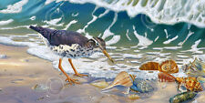Beach Bums by Randy McGovern Art Print Poster Coastal Bird Shell Decor 17x32