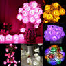 10 LED Rose Flower Fairy Xmas Light Lamp String Wedding Party Decor Home Bedroom