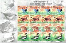 INDIA 2006 ENDANGERED BIRDS SPECIES STAMP SHEETLET STORK THRUSH QUAIL FLORICAN