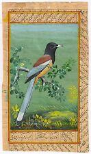 Ethnic Bird Miniature Indian Art Painting Wall Hanging Handmade Decor Painting