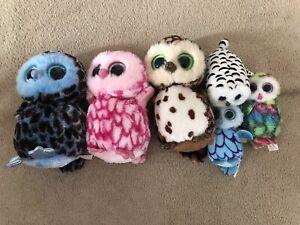 Beanie Boo Bundle Owls