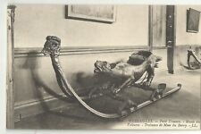France Old Postcard Versailles  Petit Trianon Musee  des Voitures