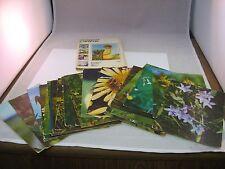 24 Vintage 1973 Russian Postcards Info Cards: FLOWERS PLANTS