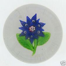 Antique Boston & Sandwich Blue Poinsetta Glass Paperweight - Flower - GL