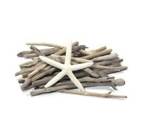 Driftwood Sticks Pack Of 250 Gram Assorted Sizes With Free Starfish