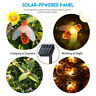 IP65 Honey Bee Solar Fairy String Lights 30 LED 8 Modes Switch Garden Lawn Decor