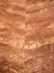 Rosenholz Furnier Bubinga Pommele Maser burl 1i 100x30cm 2 Bl
