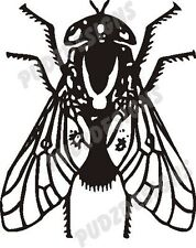 FLY INSECT BUG CAR DECAL STICKER