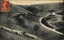Poissons Frankreich France AK 1909 Côtés de Melaire Schäfer Shepherd gelaufen