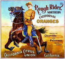 Oroville Rough Rider Theodore Roosevelt Orange Citrus Fruit Crate Label Print