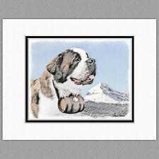 St Saint Bernard Dog Original Art Print 8x10 Matted to 11x14