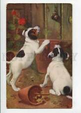 279726 Jack Russell Terrier & Snail by Cobbs Vintage Tuck Pc