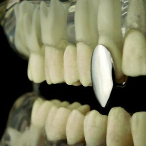 Vampire Fang Single Cap Grill Silver Tone One Canine Tooth Fangs Dracula Grillz