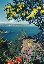 Cannes view from the bay France Postcard 1968 used VGC