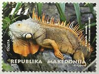 Makedonien Macedonia 2017 Michel Nr. 791 Haustiere Grüner Leguan Reptilien
