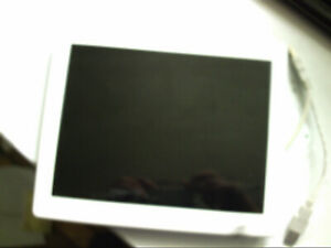 10 INCH  IPS REAR  MOUNT  DISPLAY