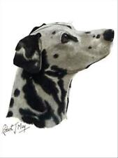 Dalmatian Dog Robert May Art Greeting Card Set of 6