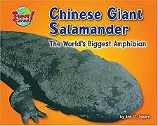 Chinese Giant Salamander : The World's Biggest Amphibian by Squire, Ann O.
